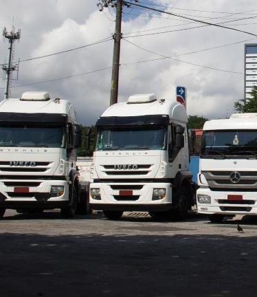 Imagem dos caminhões da Transportadora Di Pardo Transportes